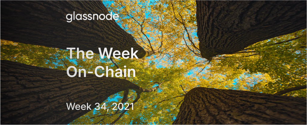 The Week On-chain (Week 34, 2021)